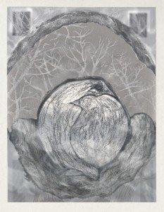 Hidden Nest Variation 4