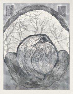 TwoBirds in half nest Variation 6